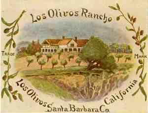 Los Olivos Rancho